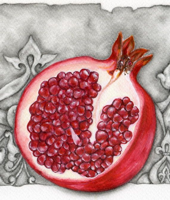 Pomegranate  Art Print by ForestSpiritArt on Etsy, £19.00