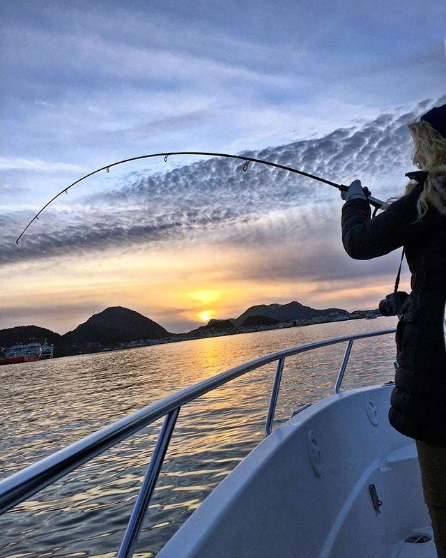 Pescando en alta mar! Es difícil de creer que puede haber vida en éstas aguas tan heladas, verdad? La realidad es que los océanos están llenos de una gran variedad de peces de gran tamaño, así que por qué no probar suerte y tratar de pescar la cena?  La pesca en Noruega es una forma de acercarse al estilo de vida local, de hecho, el aumento del uso de los alimentos orgánicos se considera un importante objetivo para los noruegos, muchos se sienten orgullosos de cocinar lo que ellos mismos…