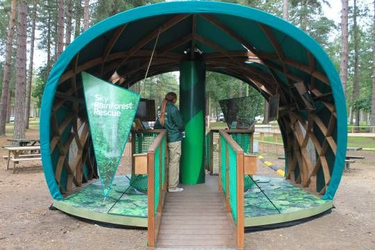 Sky Rainforest Rescue Canopy Walk at Cannock Chase