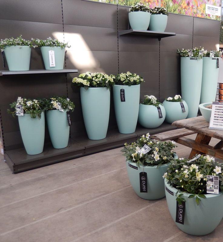 elho pure products in mint @ tuinzaken retail experience #elho #elhofeeling #pure #design #mint #garden