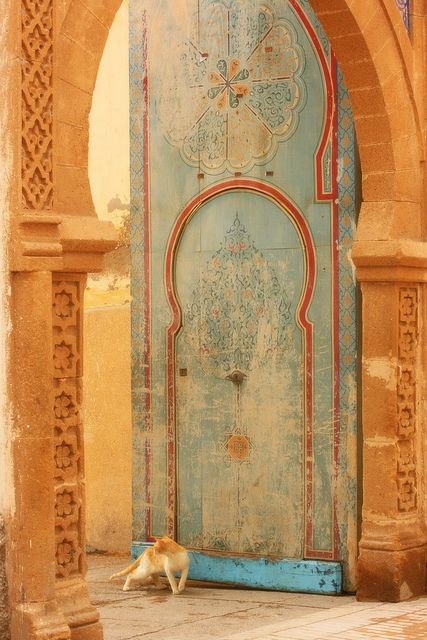 Morocco, pic by Lizzy Jane Haslem. I hope I never run across this door in Morocco as I would be too tempted to take it off the hinges, strap it to the plane and bring it home. The kitty, too.