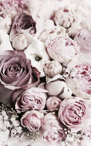 Blumen – St.Pauli Girl