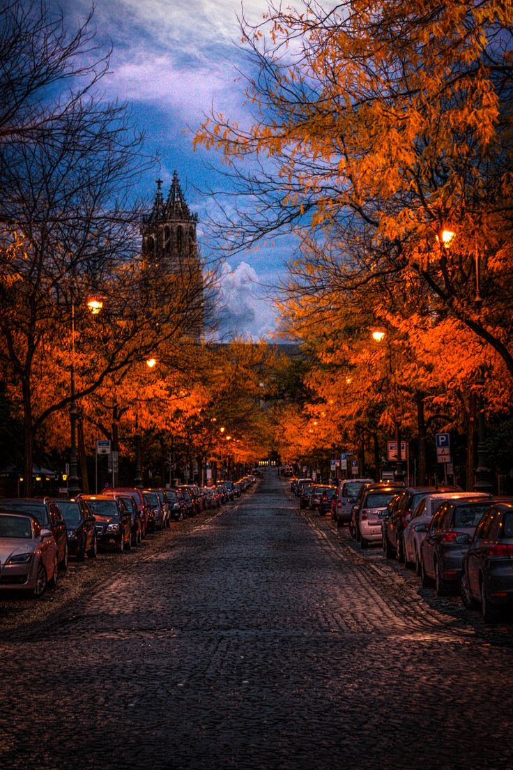 A beautiful autumn afternoon in Magdeburg, Germany.