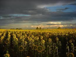 Resultado de imagen para paisajes de argentina fotos
