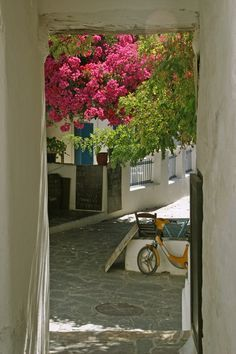 Folegandros beauty, Geece