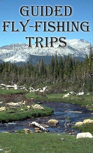 Colorado Fly Fishing Guides, Arkansas River, Buena Vista, Leadville, Guided Fishing Trips