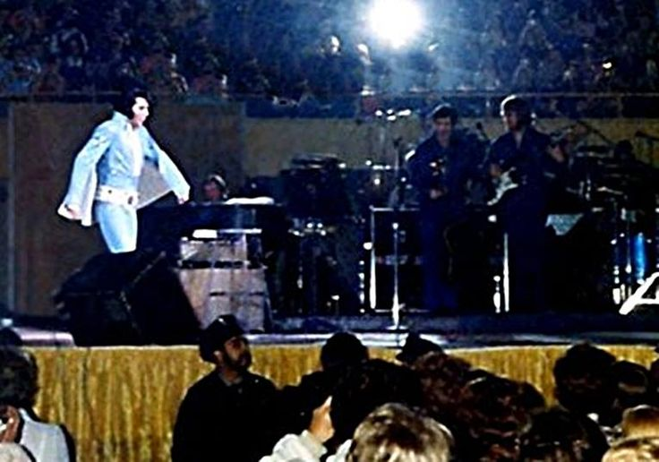 261 Best Images About Elvis At The Garden I Was There On