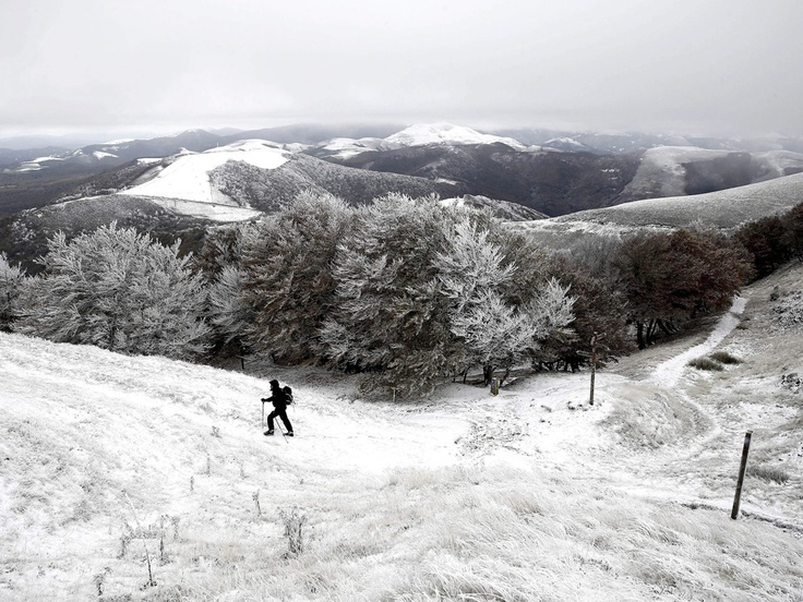 A man walks near Pamplona, after the first snowfall in northern Spain  Jesus Diges