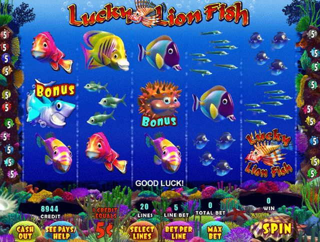 Play new game the fish party online slot game for fun & win money