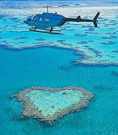 ハミルトン島のハート型リーフを見てみたい。 オーストラリア旅行のおすすめ見所・観光アイデアまとめ。