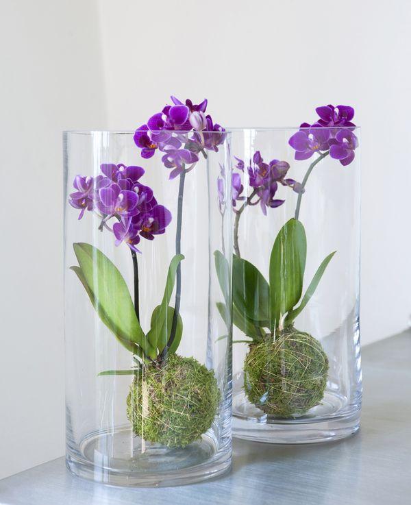 Bak glass og ramme fra Interflora. Om denne nettbutikken: http://nettbutikknytt.no/interflora-no/