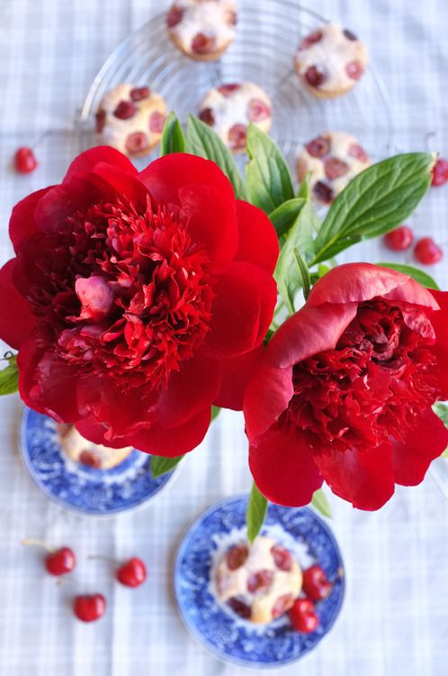 Cherry red peonies with cherry muffins. That's summer in a nut shell!