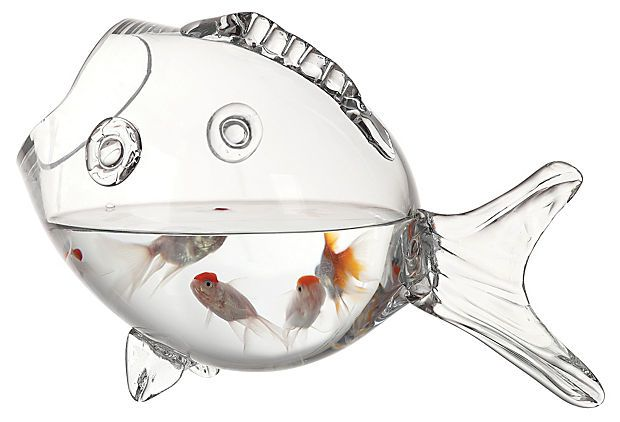 233 best cool stuff i want images on pinterest gift for Target fish bowl