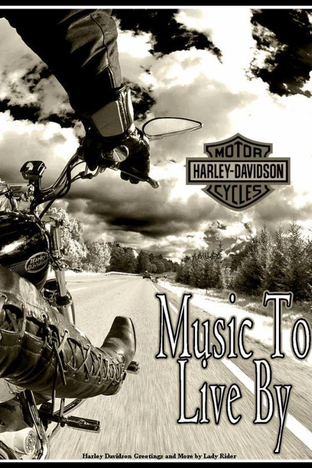 236 best images about women harley davidson motorcycle riders on pinterest motorcycle quotes. Black Bedroom Furniture Sets. Home Design Ideas