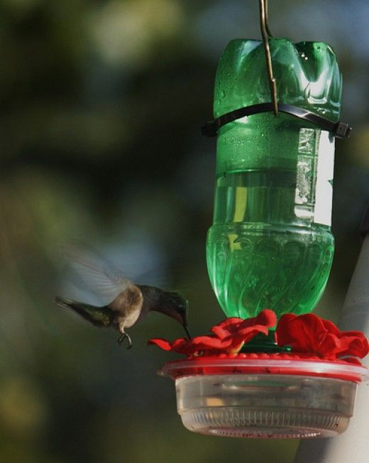 17 best images about hortas e jardins on pinterest for Making a bird feeder out of recycled materials