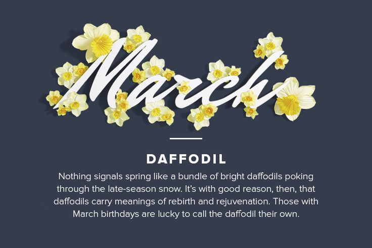 The flowers of the month for March. Learn more about March's birth flower ...