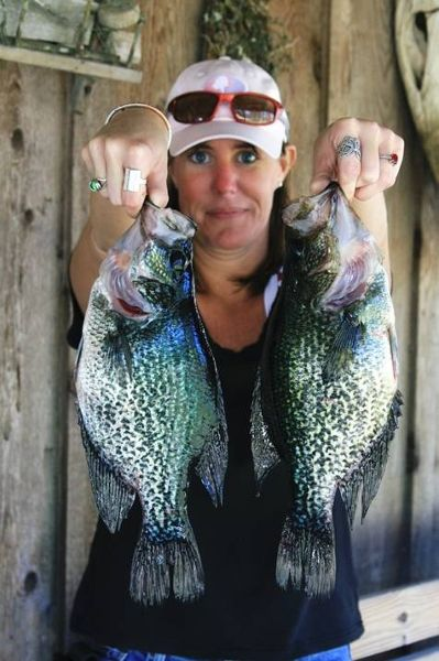 17 best images about speckled perch on pinterest seasons for Crappie fishing florida
