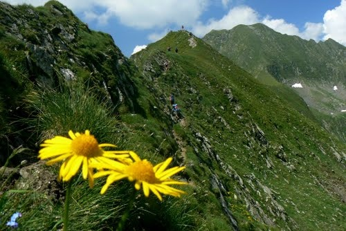 Fagaras u Arpasu #romania #fagaras #mountains