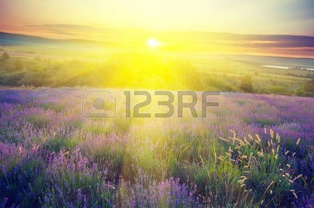 Image result for high resolution pictures of nature sun rays male