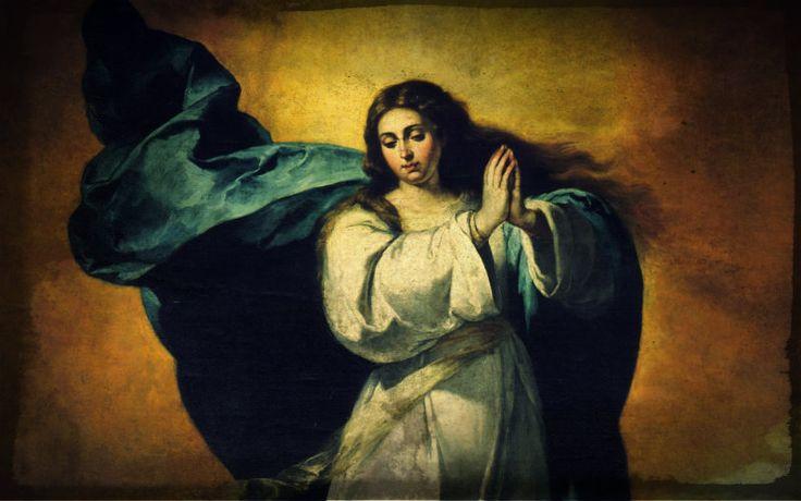 """1) """"Geef me een leger de rozenkrans en ik zal veroveren de wereld.""""-paus Bl. Pius IX 2) """"de rozenkrans is het 'wapen' voor deze keer."""" – St. Padre Pio 3) """"is de Heilige Rozenkrans een krachtig wapen. Gebruik het met vertrouwen en u zult versteld staan van de resultaten.""""– St. Josemaria Escriva 4) """"is de rozenkrans de mooiste en de meest rijk aan genaden van alle gebeden; het is het gebed dat meest het hart van de moeder van God raakt... en als je wilt vrede te regeren in uw huizen, reciter"""