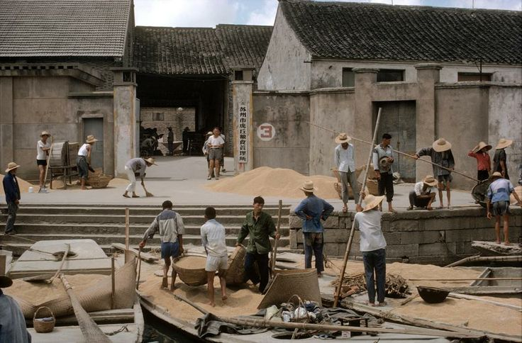 China. Grand Canal. Bringing rice to the state granary. 1979.
