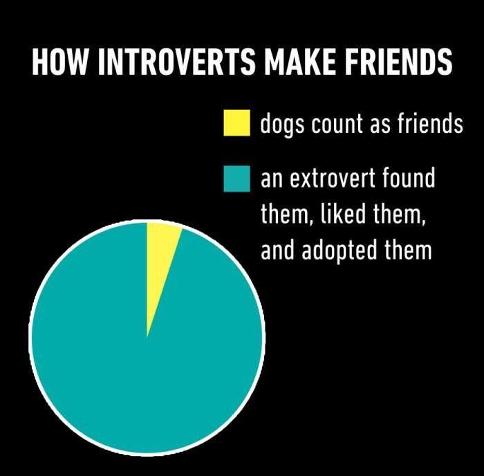 Haha introvert humor