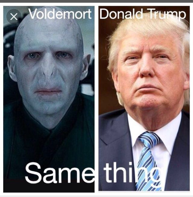 So True But I Think Voldemort Is Better Harry Potter Memes Clean Harry Potter Memes Harry Potter