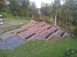 Bildresultat för odla slänt