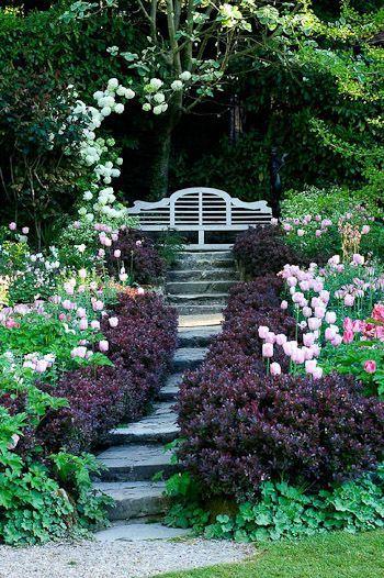 My Dream Garden bench. Such a beautiful focal point.