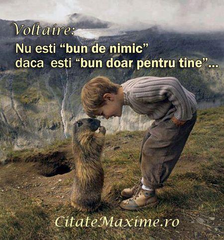 """""""Nu esti """"bun de nimic"""" daca esti """"bun doar pentru tine""""..."""" #CitatImagine de Voltaire Iti place acest #citat? ♥Distribuie♥ mai departe catr..."""