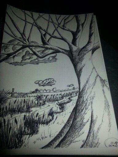 Pen tekening