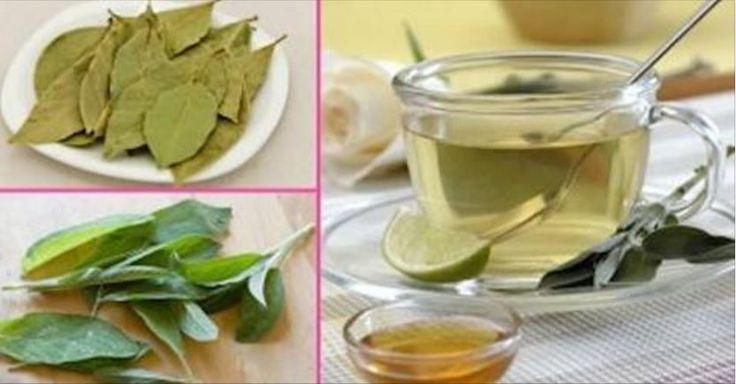 1 litro d'acqua, 5 foglie di alloro, 1 rametto di cannella, 1 pugno di foglie di salvia. x Disfarti Del Grasso di Pancia, Schiena e Braccia - Soloitaliani