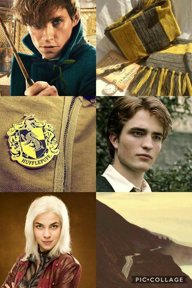I Don T Know What These Characters Have To Do With Each Other But Ok They Re All Hufflepuff Harry Potter Wallpaper Harry Potter Images Harry Potter Memes