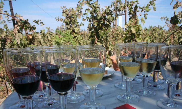 Explore Santorini's wineries. www.secretearth.com/attractions/61-wineries-of-santorini