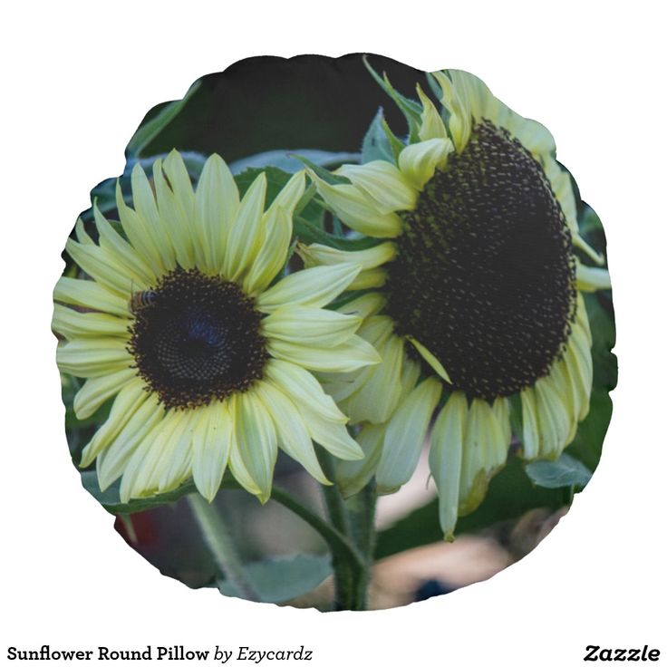 Sunflower Round Pillow Round Cushion