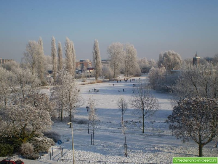 http://www.nederland-in-beeld.nl/Noord-Brabant/Breda/i/Noord-Brabant/Breda/Lachappellestraat/foto.jpg