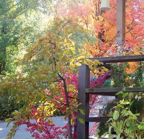 for fall colors and our Awesome Autumn season you won t be  disappointed  Hiking or biking can be great this time of the year too   Ruth s Garden cottage. 13 best Favorite Places   Spaces images on Pinterest   Motel  Gem