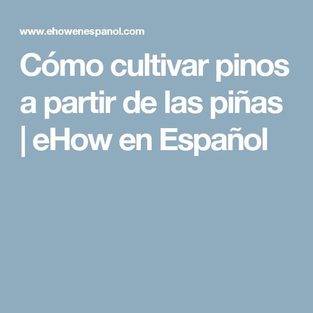 Cómo cultivar pinos a partir de las piñas | eHow en Español