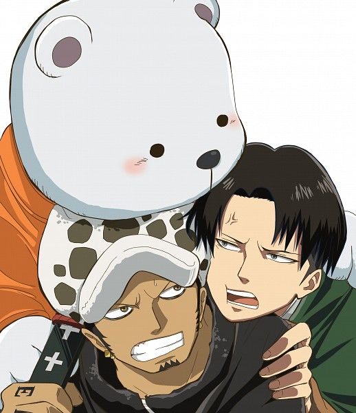 Tags: Bear, ONE PIECE, Trafalgar Law, Voice Actor Connection, Bepo, Heart Pirates