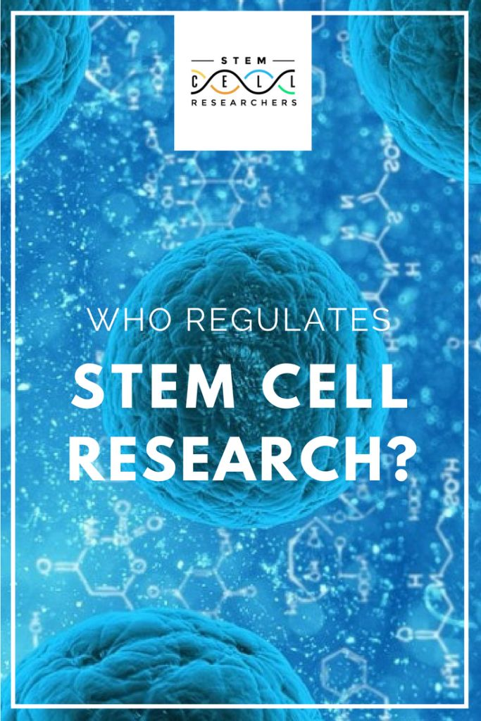 Individual #countries have their own legislation to regulate stem cell research. Find out which #organizations these are by reading on.