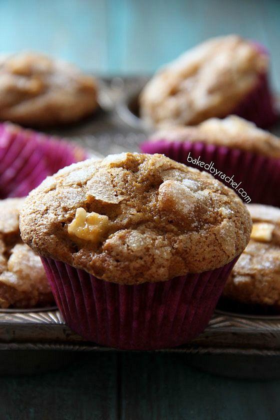 Apple Pumpkin Gingerbread Muffin Recipe from @Rachel {Baked by Rachel}