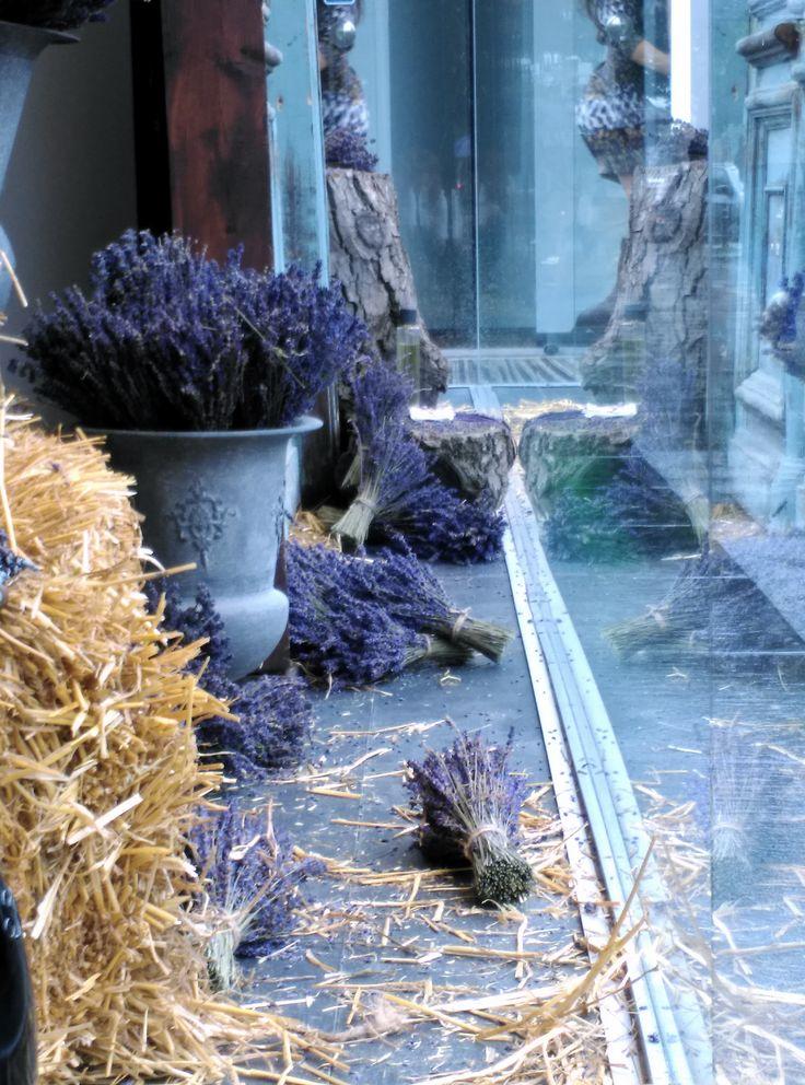 Madison Perfumery / Detail/ Window Display by Mihaela Damian