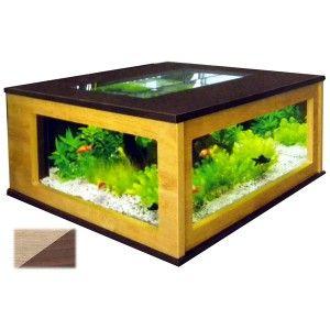 La table aquarium : à la fois table basse et aquarium de 310L !