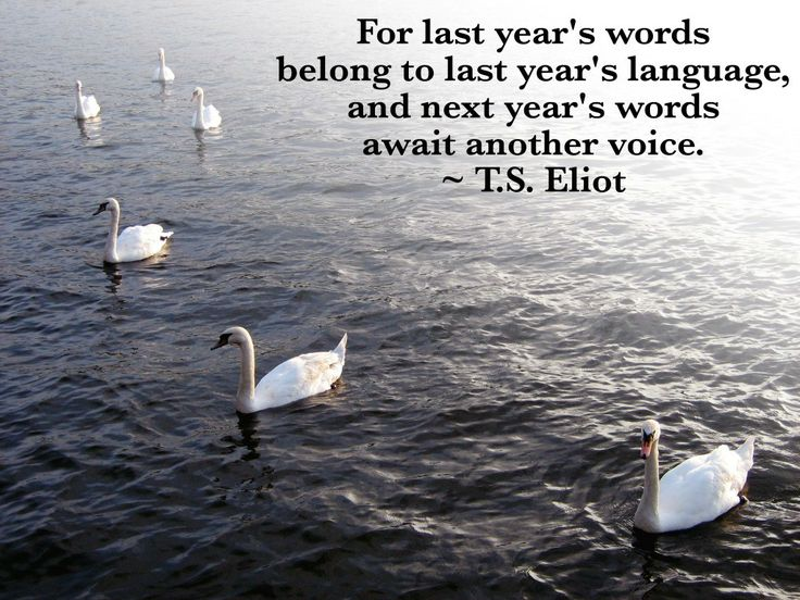 best happy new year quotes images 2015