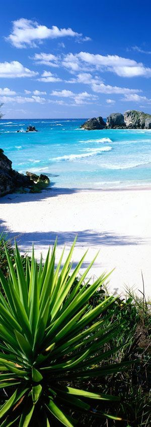 Horseshoe Bay Beach in Bermuda | Caribbean Islands #www.homeinstbarts .com #LuxuryVillasinStBarts for #rent