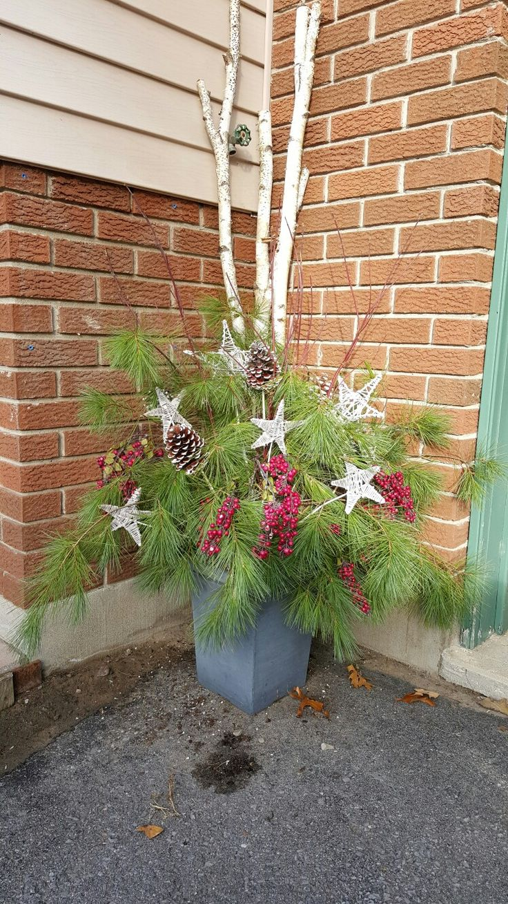 Christmas outdoor planter assembled after a walk in the woods.