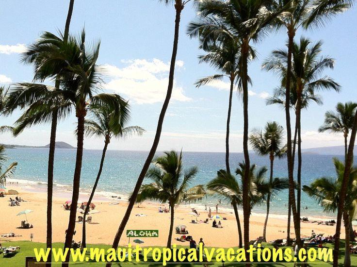 17 best images about maui tropical vacations on pinterest cars weather forecast and code for. Black Bedroom Furniture Sets. Home Design Ideas