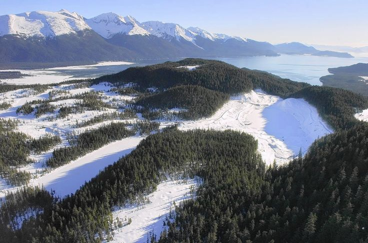 Coalitions sue Forest Service to block Alaska old-growth timber sale