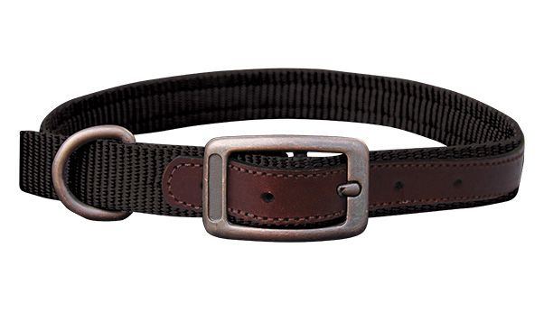 THE SEDONA (DOG0180-2) The Sedona set is designed for rugged dependability and outdoorsy flair with a durable nylon and small leather detailing. The leather reinforced holes help prevent tearing and wear and keep the collar looking top quality. Complete with brushed steel buckles, dee ring and snap. This set is perfect for your outdoor lifestyle.