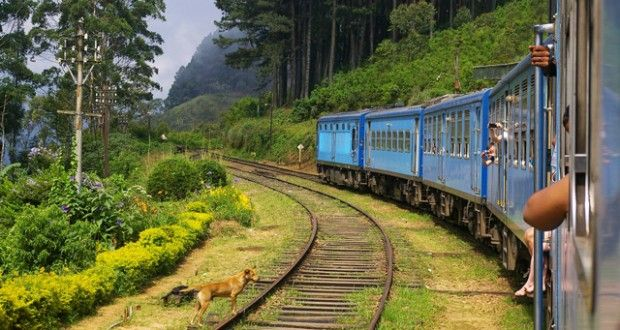 The latest competitions from National Geographic Traveller (UK) Source: Win a holiday to Sri Lanka | Travel Competition | Nat Geo Traveller (UK)